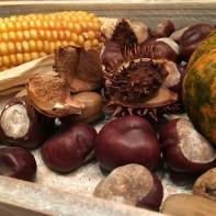 Bild von Maiskolben, Kastanien und Kürbis von Hausfrauenmethode